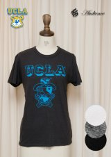"【RE PRICE / 価格改定】 UCLA""UCLA""エンブレム三素材混カレッジプリント半袖クルーネックTシャツ [Lady's] / Audience"