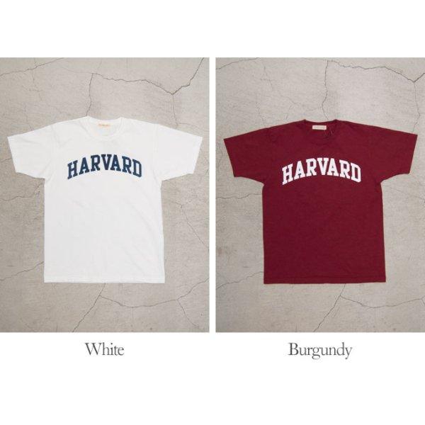 """画像5: 【RE PRICE / 価格改定】HARVARD""""HARVARD""""C/N S/S 6oz オールドプリントT [Lady's] / Audience"""