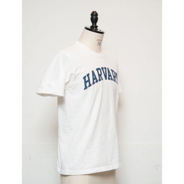"""画像3: 【RE PRICE / 価格改定】HARVARD""""HARVARD""""C/N S/S 6oz オールドプリントT [Lady's] / Audience"""