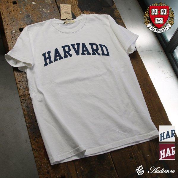 """画像1: 【RE PRICE / 価格改定】HARVARD""""HARVARD""""C/N S/S 6oz オールドプリントT [Lady's] / Audience"""