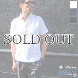 【RE PRICE / 価格改定】Coolmax(クールマックス)鹿の子Vネック隠しボタンダウンポロシャツ / Audience