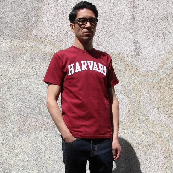 """画像2: 【RE PRICE/価格改定】HARVARD""""HARVARD""""C/N S/S 6oz オールドプリントT / Audience"""