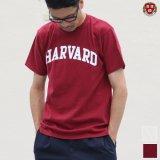 "【RE PRICE/価格改定】HARVARD""HARVARD""C/N S/S 6oz オールドプリントT / Audience"