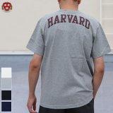 "【RE PRICE / 価格改定】Harvard University ""HARVARD"" 7.1oz米綿丸胴オールドプリントクルーネックポケットT / Audience"