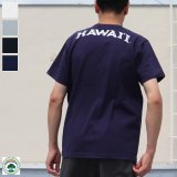 "【RE PRICE/価格改定】University of Hawaii ""HAWAII"" 7.1oz米綿丸胴オールドプリントクルーネックポケットT / Audience"