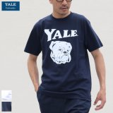 "6.2オンス丸胴BODY YALE""Handsome-YALEオールドプリント""TEE / Audience"