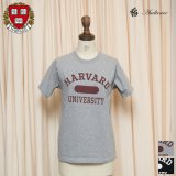 "HARVARD""HARVARD UNIVERSITY""C/N S/S 6oz オールドプリントT [Lady's] / Audience"